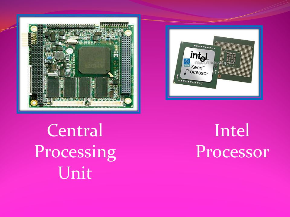 Central Processing Unit Intel Processor