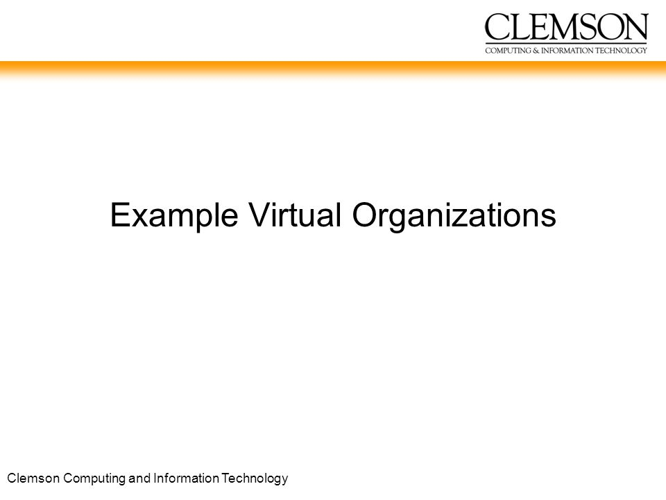 Clemson Computing and Information Technology Example Virtual Organizations