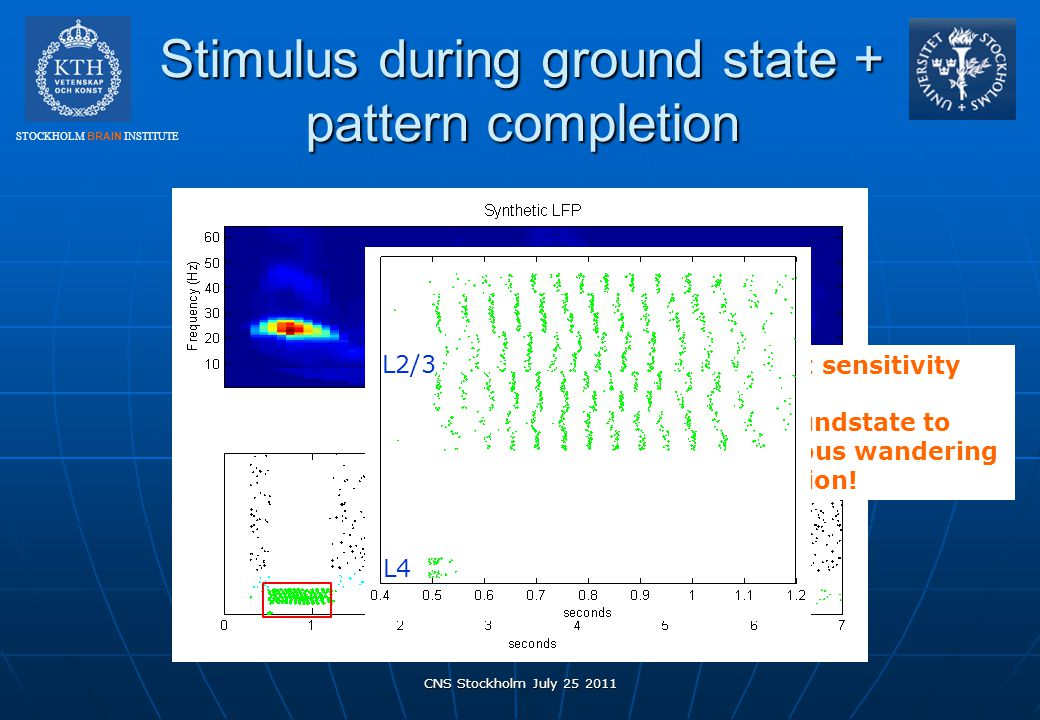 STOCKHOLM BRAIN INSTITUTE Stimulus during ground state + pattern completion CNS Stockholm July 25 2011 High input sensitivity From groundstate to spon