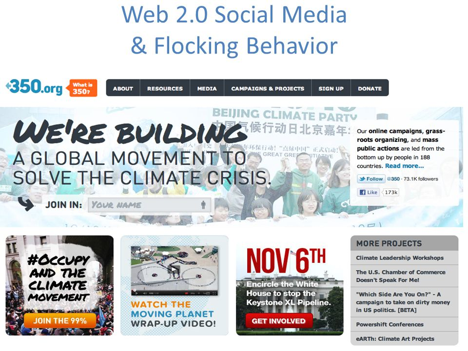Web 2.0 Social Media & Flocking Behavior