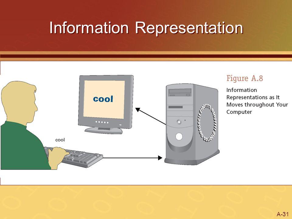 A-31 Information Representation
