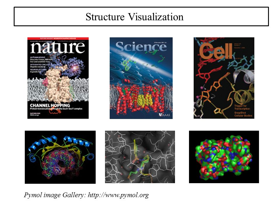 Structure Visualization Pymol image Gallery: http://www.pymol.org