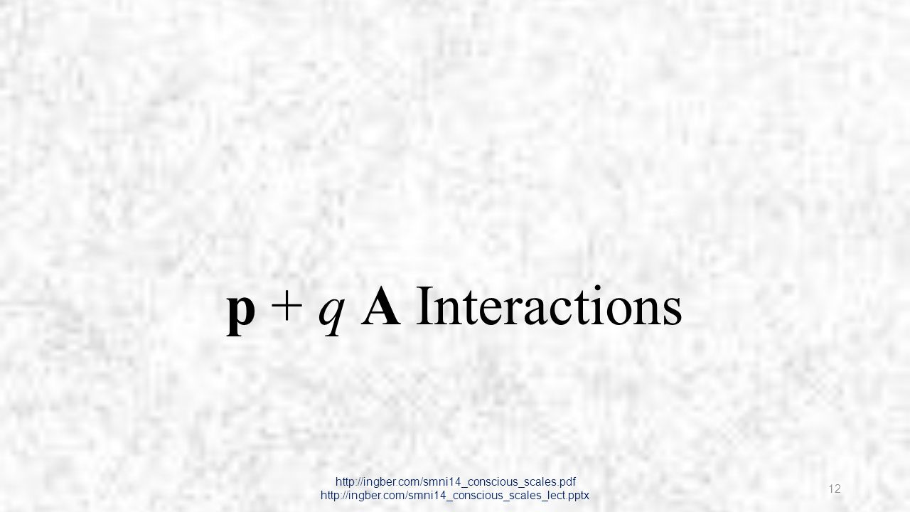 p + q A Interactions http://ingber.com/smni14_conscious_scales.pdf http://ingber.com/smni14_conscious_scales_lect.pptx 12