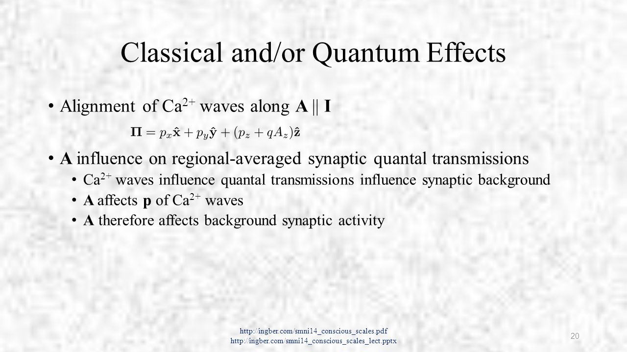 Classical and/or Quantum Effects Alignment of Ca 2+ waves along A || I A influence on regional-averaged synaptic quantal transmissions Ca 2+ waves influence quantal transmissions influence synaptic background A affects p of Ca 2+ waves A therefore affects background synaptic activity http://ingber.com/smni14_conscious_scales.pdf http://ingber.com/smni14_conscious_scales_lect.pptx 20
