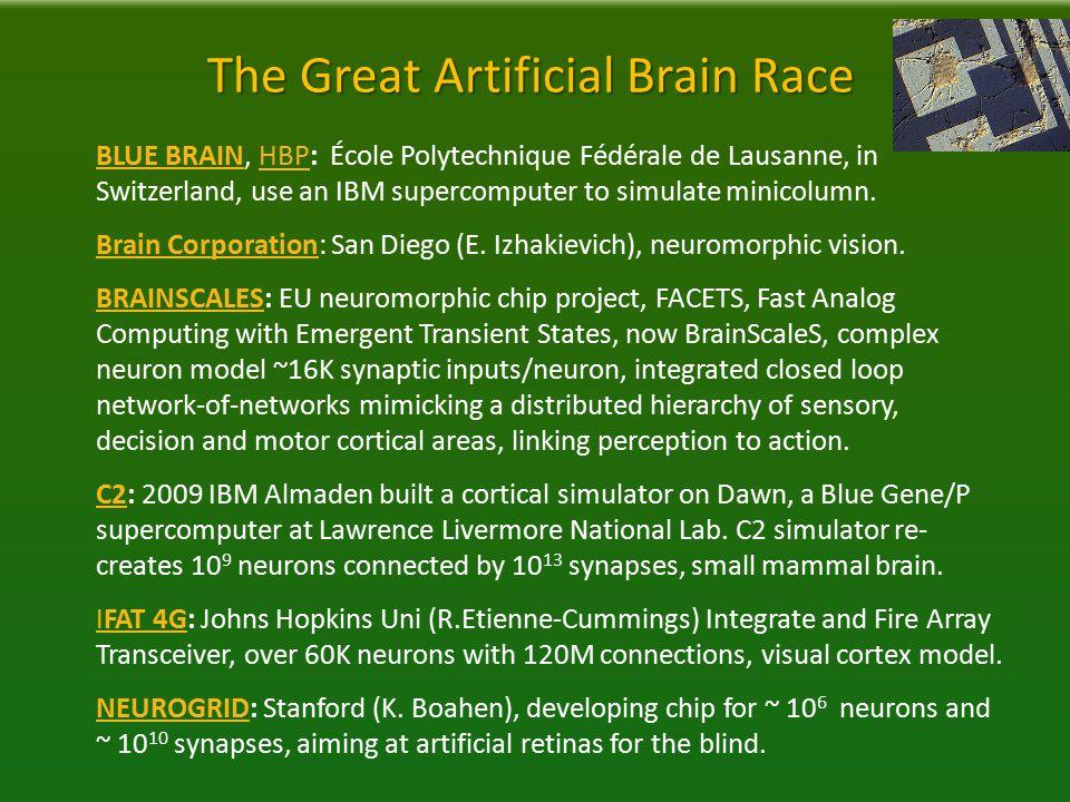 The Great Artificial Brain Race BLUE BRAINBLUE BRAIN, HBP: École Polytechnique Fédérale de Lausanne, in Switzerland, use an IBM supercomputer to simulate minicolumn.HBP Brain CorporationBrain Corporation: San Diego (E.