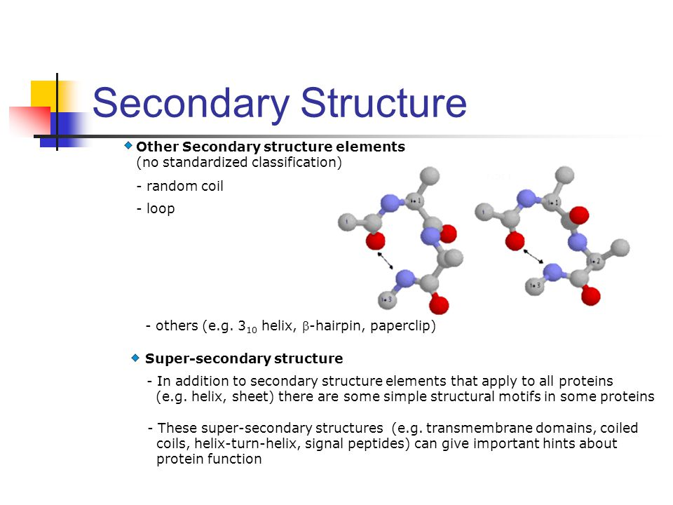Other Secondary structure elements (no standardized classification) - loop - random coil - others (e.g. 3 10 helix, -hairpin, paperclip) Super-second