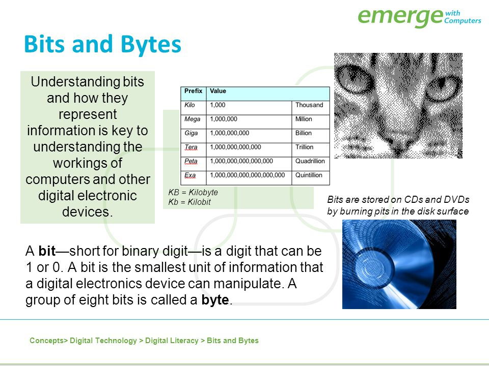 Bits and Bytes A bit—short for binary digit—is a digit that can be 1 or 0. A bit is the smallest unit of information that a digital electronics device