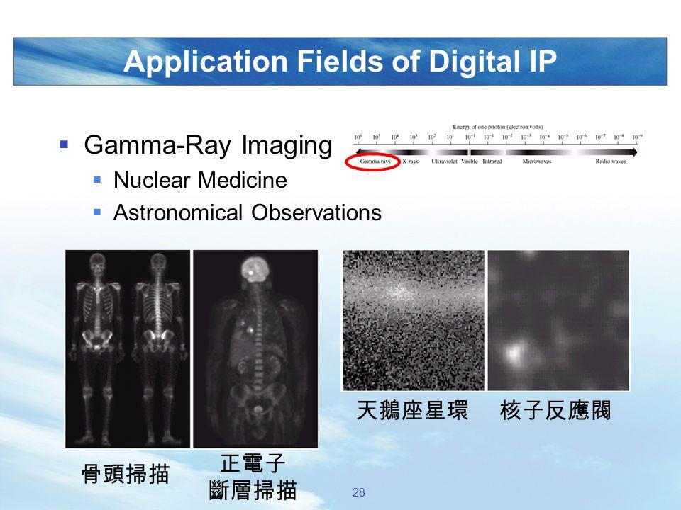 Application Fields of Digital IP  Gamma-Ray Imaging  Nuclear Medicine  Astronomical Observations 骨頭掃描 正電子 斷層掃描 核子反應閥天鵝座星環 28