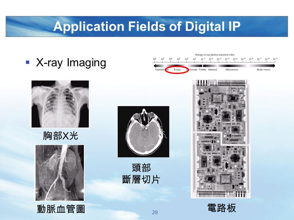 Application Fields of Digital IP  X-ray Imaging 胸部 X 光 動脈血管圖 電路板 頭部 斷層切片 29
