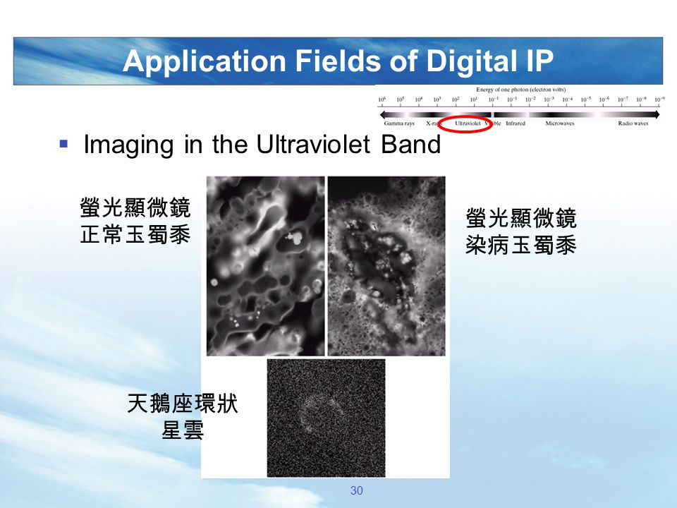 Application Fields of Digital IP  Imaging in the Ultraviolet Band 螢光顯微鏡 正常玉蜀黍 螢光顯微鏡 染病玉蜀黍 天鵝座環狀 星雲 30
