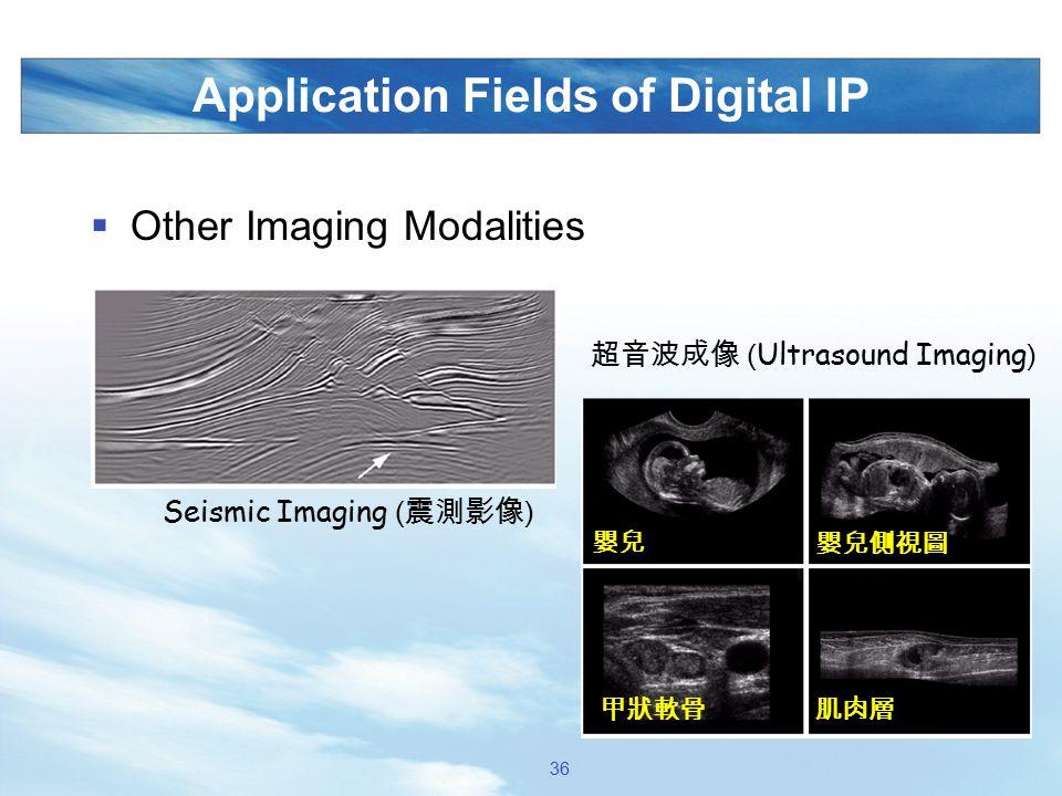 Application Fields of Digital IP  Other Imaging Modalities Seismic Imaging ( 震測影像 ) 超音波成像 ( Ultrasound Imaging ) 嬰兒 嬰兒側視圖 甲狀軟骨肌肉層 36