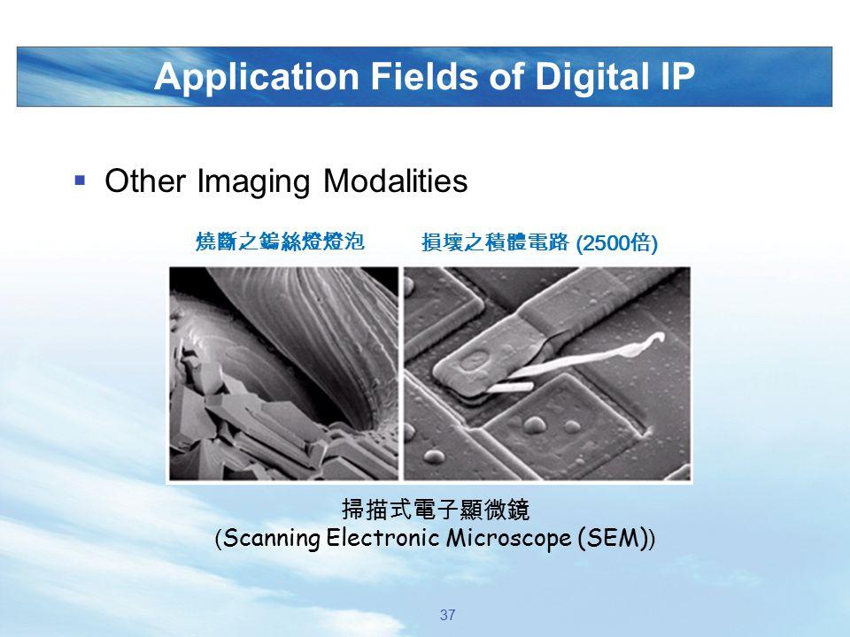 Application Fields of Digital IP  Other Imaging Modalities 掃描式電子顯微鏡 ( Scanning Electronic Microscope (SEM) ) 燒斷之鎢絲燈燈泡 損壞之積體電路 (2500 倍 ) 37