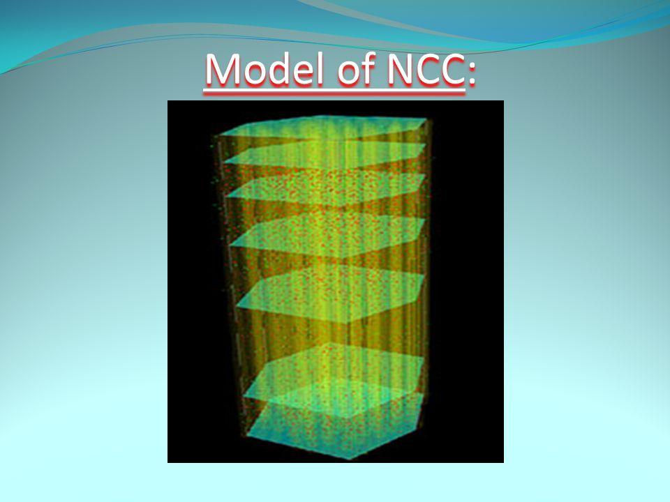 Model of NCC: