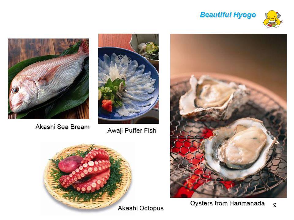 Oysters from Harimanada Akashi Octopus Awaji Puffer Fish Akashi Sea Bream Beautiful Hyogo 9