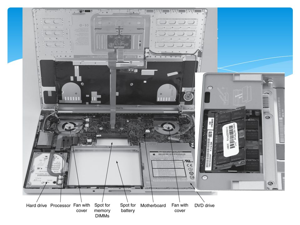 Processor: control and ALU  Memory  Input  Output  Like human organs Five Classic Components