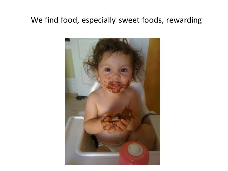We find food, especially sweet foods, rewarding