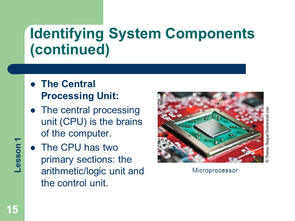 Lesson 1 Identifying System Components (continued) The Central Processing Unit: The central processing unit (CPU) is the brains of the computer. The C