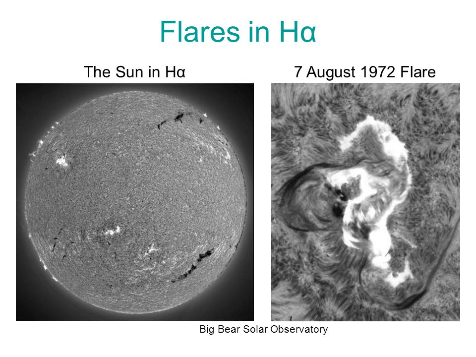 Flares in Hα Big Bear Solar Observatory 7 August 1972 FlareThe Sun in Hα