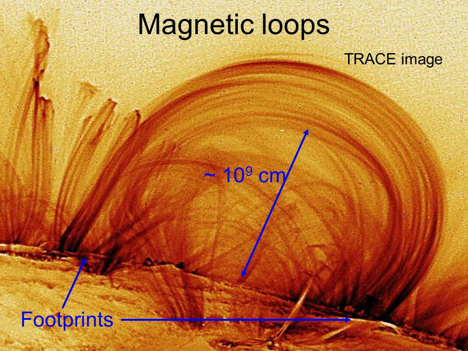 Magnetic loops TRACE image Footprints ~ 10 9 cm