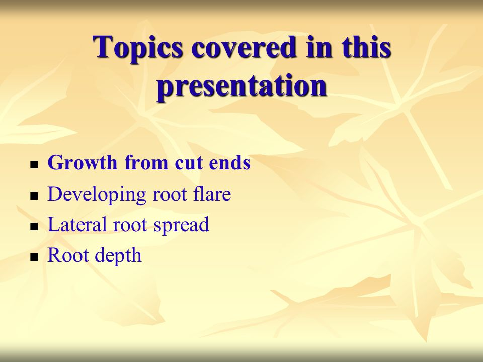 Topics covered in this presentation Growth from cut ends Developing root flare Lateral root spread Root depth
