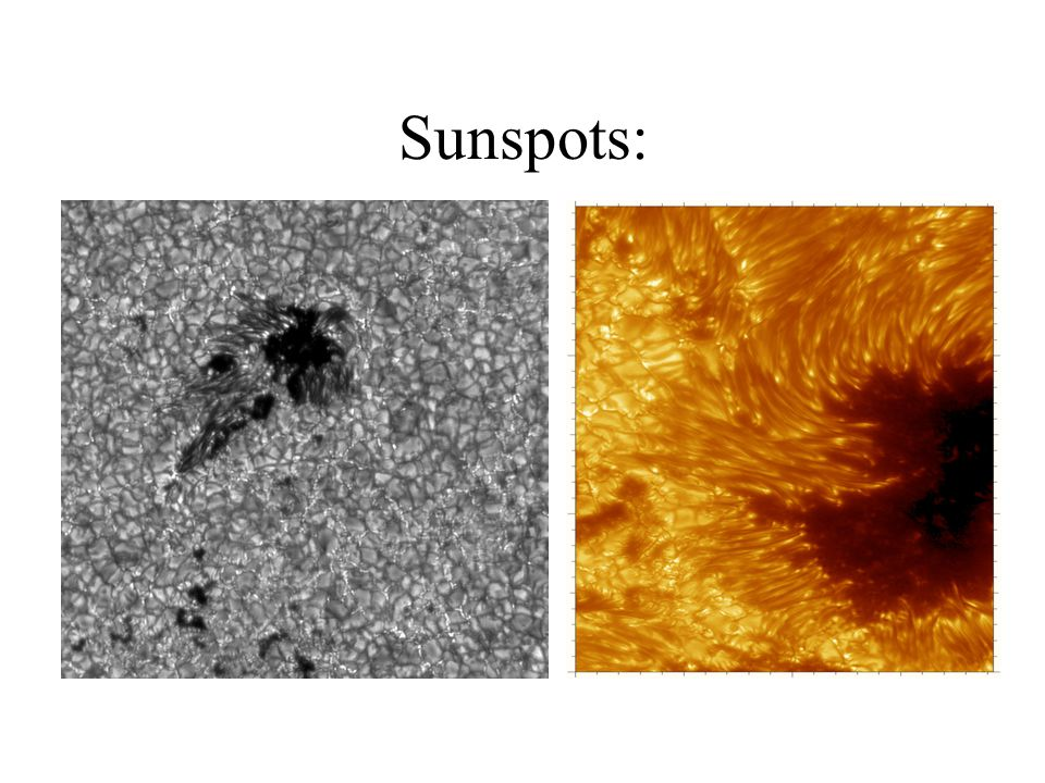 Galileo discovered that the Sun s surface is sprinkled with small dark regions called sunspots. Sunspots are cooler regions on the photosphere.