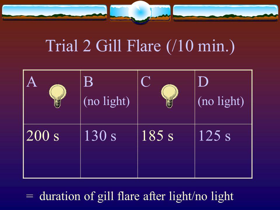 Trial 2 Gill Flare (/10 min.) AB (no light) CD (no light) 200 s130 s185 s125 s = duration of gill flare after light/no light