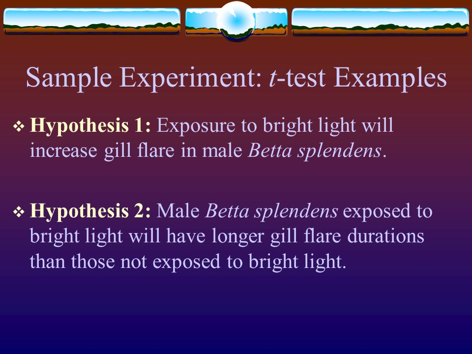 Sample Experiment: t-test Examples  Hypothesis 1: Exposure to bright light will increase gill flare in male Betta splendens.