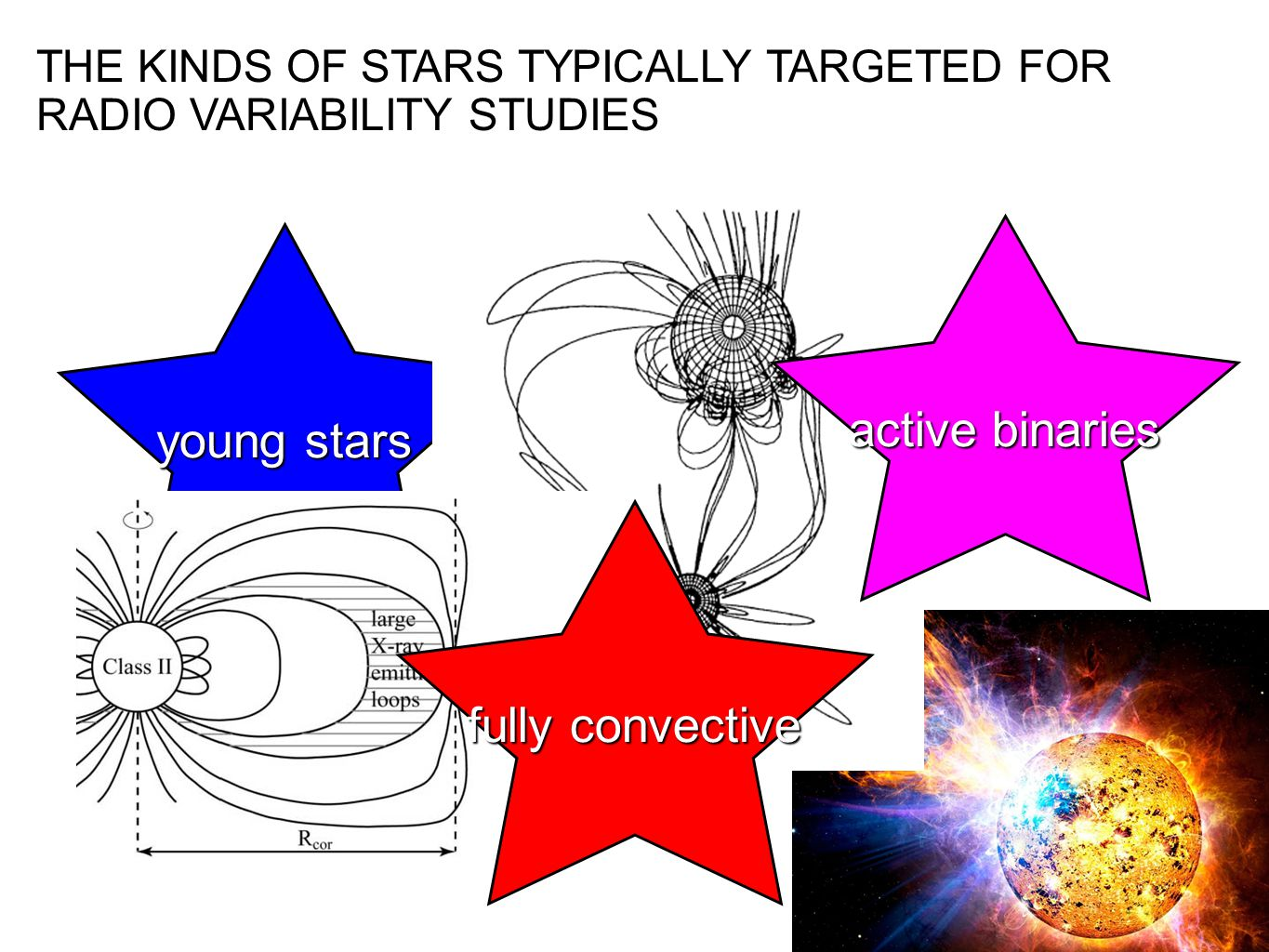 young stars THE KINDS OF STARS TYPICALLY TARGETED FOR RADIO VARIABILITY STUDIES fully convective active binaries