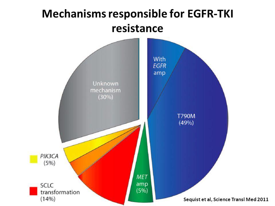 EGFR-TKI resistance A B