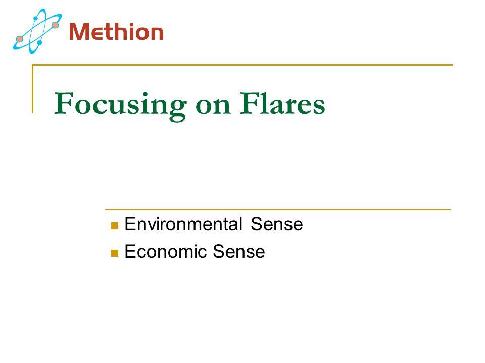 Focusing on Flares Environmental Sense Economic Sense
