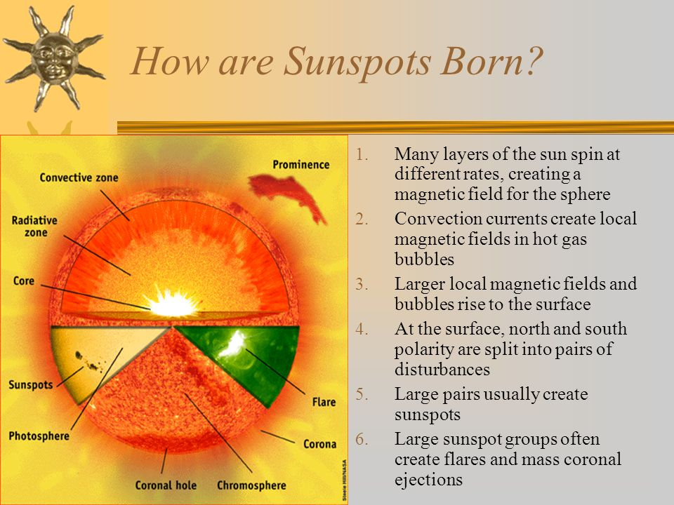 How are Sunspots Born? 1. Many layers of the sun spin at different rates, creating a magnetic field for the sphere 2. Convection currents create local