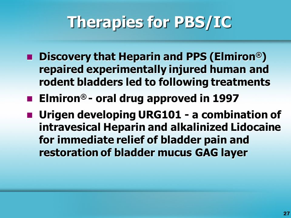 27 Therapies for PBS/IC Discovery that Heparin and PPS (Elmiron ® ) repaired experimentally injured human and rodent bladders led to following treatments Elmiron ® - oral drug approved in 1997 Urigen developing URG101 - a combination of intravesical Heparin and alkalinized Lidocaine for immediate relief of bladder pain and restoration of bladder mucus GAG layer Discovery that Heparin and PPS (Elmiron ® ) repaired experimentally injured human and rodent bladders led to following treatments Elmiron ® - oral drug approved in 1997 Urigen developing URG101 - a combination of intravesical Heparin and alkalinized Lidocaine for immediate relief of bladder pain and restoration of bladder mucus GAG layer