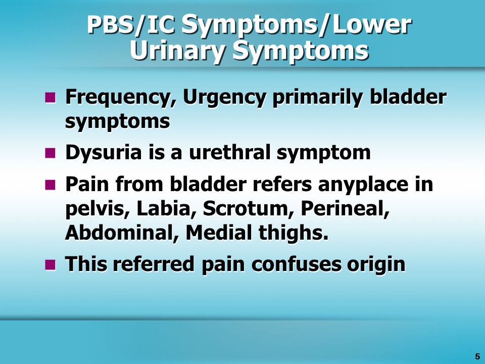 5 PBS/IC Symptoms/Lower Urinary Symptoms Frequency, Urgency primarily bladder symptoms Dysuria is a urethral symptom Pain from bladder refers anyplace in pelvis, Labia, Scrotum, Perineal, Abdominal, Medial thighs.