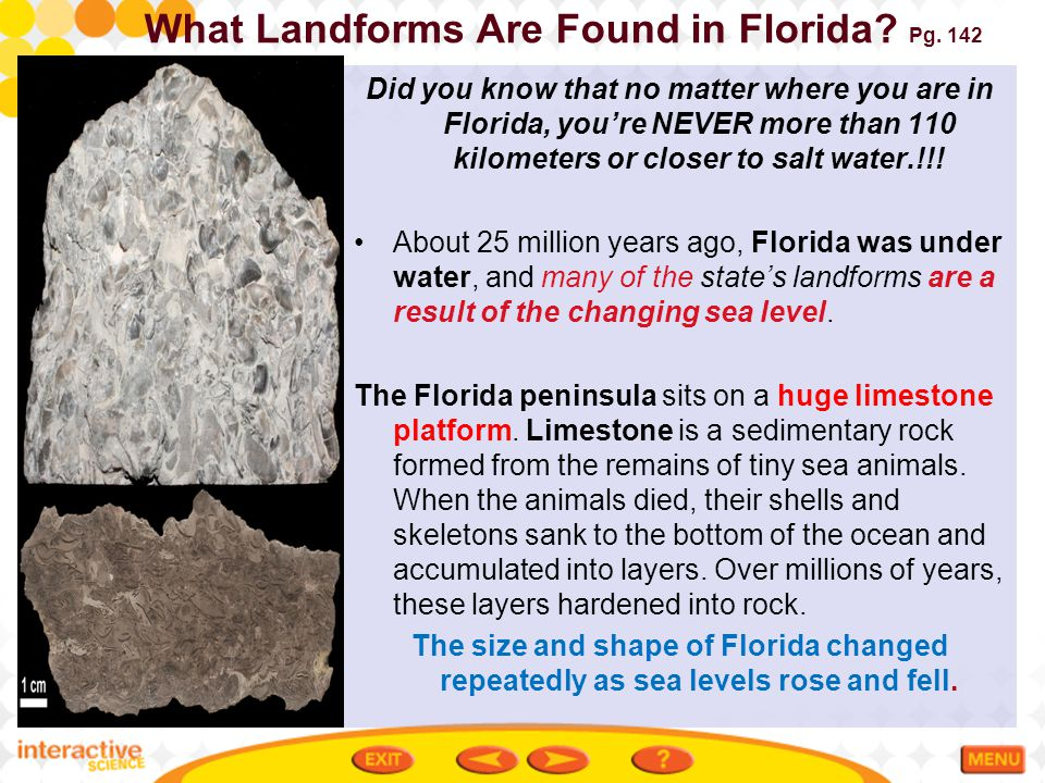 What Landforms Are Found in Florida.Pg.