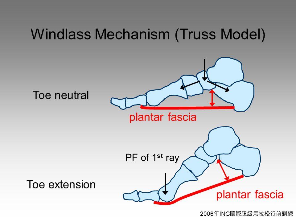 2006 年 ING 國際超級馬拉松行前訓練 Windlass Mechanism (Truss Model) Toe neutral Toe extension plantar fascia PF of 1 st ray