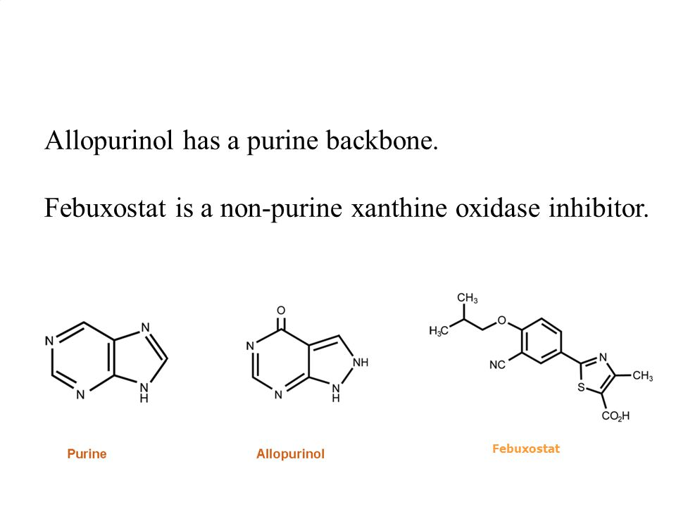 TXF-00099 Febuxostat A Allopurinol has a purine backbone.