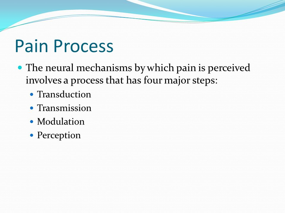 Pain Process The neural mechanisms by which pain is perceived involves a process that has four major steps: Transduction Transmission Modulation Perception