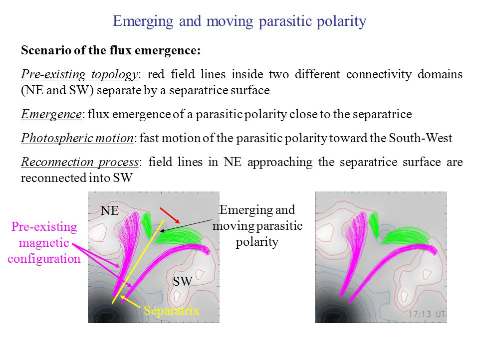 Emerging and moving parasitic polarity Pre-existing magnetic configuration Emerging and moving parasitic polarity Separatrix Scenario of the flux emer