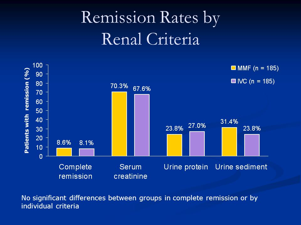 Remission Rates by Renal Criteria No significant differences between groups in complete remission or by individual criteria