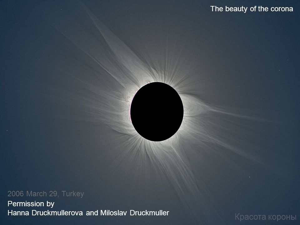 Красота короны The beauty of the corona 2006 March 29, Turkey Permission by Hanna Druckmullerova and Miloslav Druckmuller