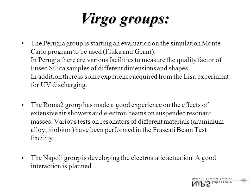 Virgo groups: The Perugia group is starting an evaluation on the simulation Monte Carlo program to be used (Fluka and Geant).