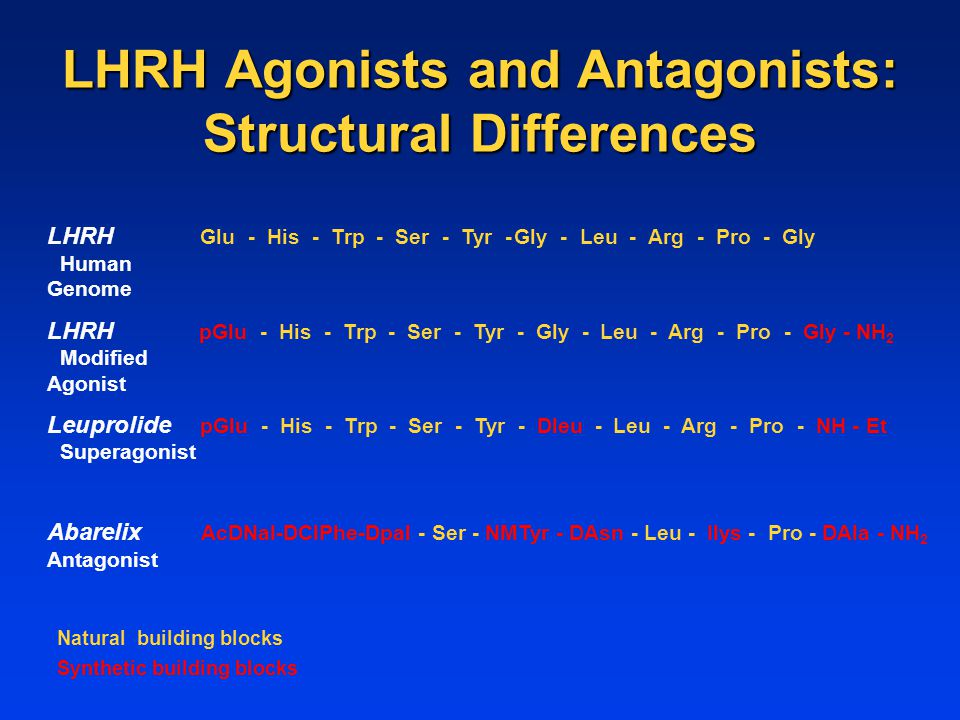 LHRH Agonists and Antagonists: Structural Differences LHRH Glu - His - Trp - Ser - Tyr -Gly - Leu - Arg - Pro - Gly Human Genome LHRH pGlu - His - Trp - Ser - Tyr - Gly - Leu - Arg - Pro - Gly - NH 2 Modified Agonist Leuprolide pGlu - His - Trp - Ser - Tyr - Dleu - Leu - Arg - Pro - NH - Et Superagonist Abarelix AcDNal-DClPhe-Dpal - Ser - NMTyr - DAsn - Leu - Ilys - Pro - DAla - NH 2 Antagonist Natural building blocks Synthetic building blocks