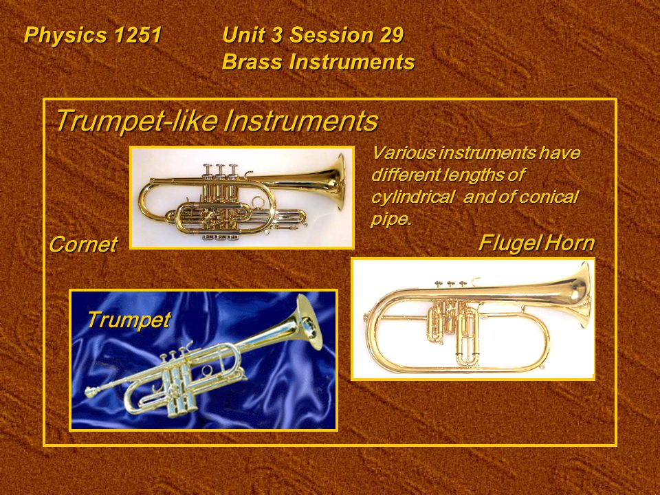 Physics 1251Unit 3 Session 29 Brass Instruments Trumpet-like Instruments Cornet Trumpet Flugel Horn Various instruments have different lengths of cylindrical and of conical pipe.