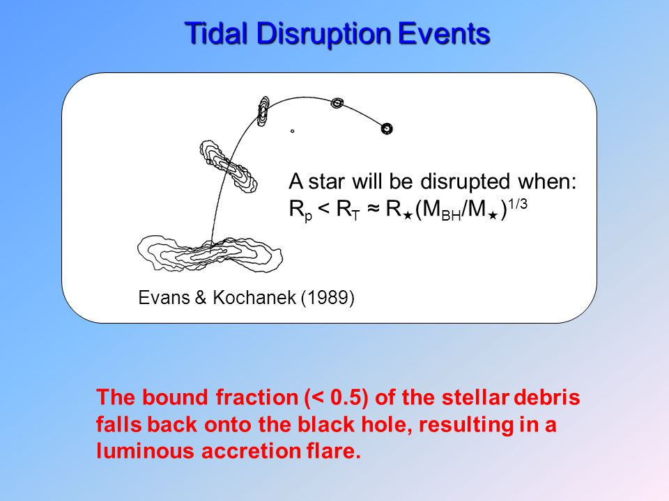 A star will be disrupted when: R p < R T ≈ R  (M BH /M  ) 1/3 Evans & Kochanek (1989) Tidal Disruption Events The bound fraction (< 0.5) of the stellar debris falls back onto the black hole, resulting in a luminous accretion flare.