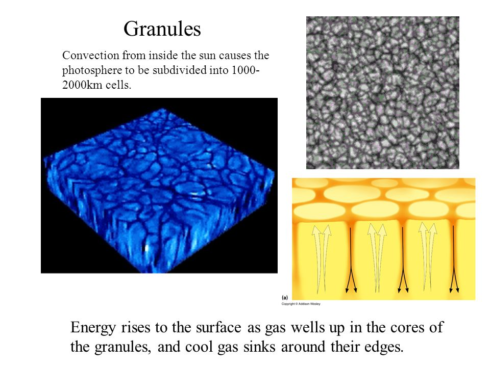 Granules Energy rises to the surface as gas wells up in the cores of the granules, and cool gas sinks around their edges.