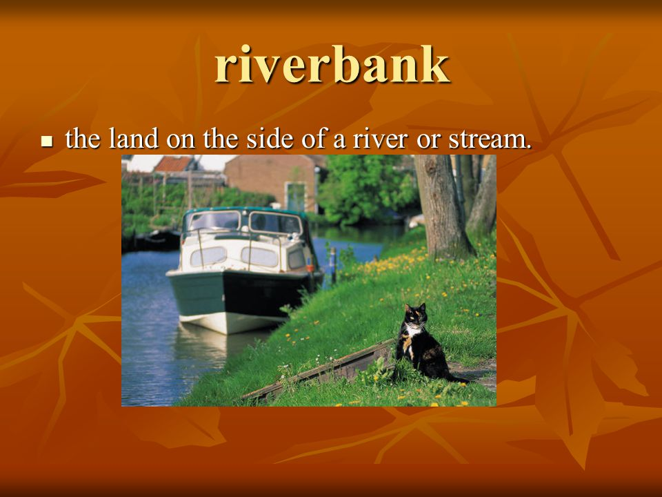 riverbank the land on the side of a river or stream. the land on the side of a river or stream.
