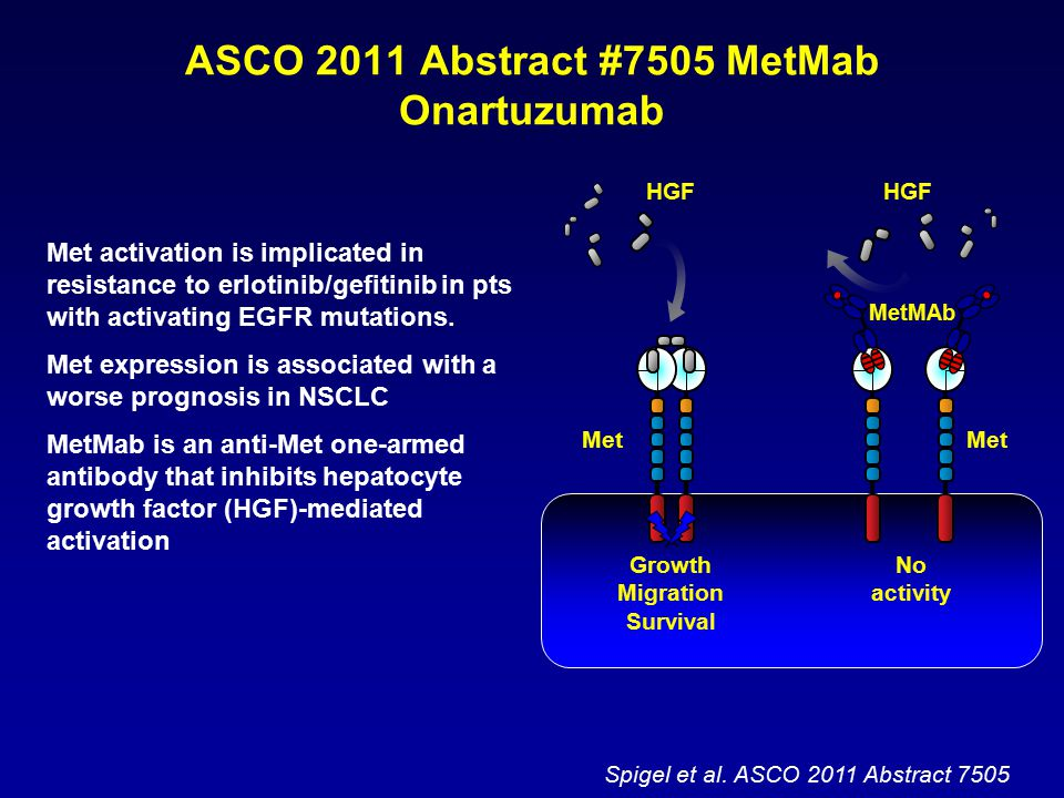 ASCO 2011 Abstract #7505 MetMab Onartuzumab Met activation is implicated in resistance to erlotinib/gefitinib in pts with activating EGFR mutations. M