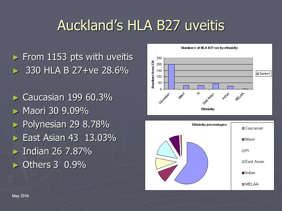May 2014 Auckland's HLA B27 uveitis ► From 1153 pts with uveitis ► 330 HLA B 27+ve 28.6% ► Caucasian 199 60.3% ► Maori 30 9.09% ► Polynesian 29 8.78% ► East Asian 43 13.03% ► Indian 26 7.87% ► Others 3 0.9%