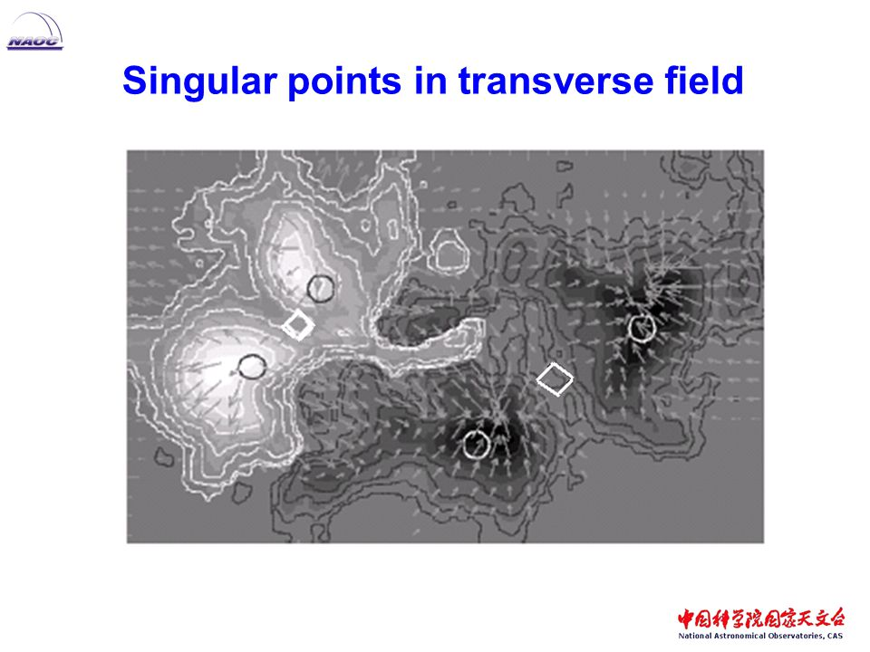 Singular points in transverse field