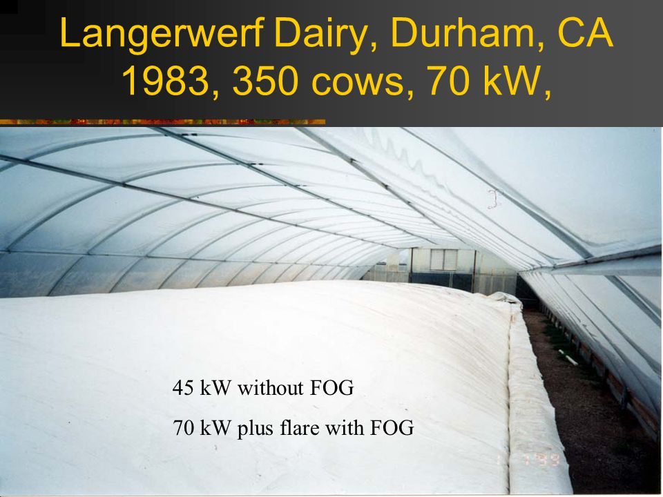 Langerwerf Dairy, Durham, CA 1983, 350 cows, 70 kW, 45 kW without FOG 70 kW plus flare with FOG